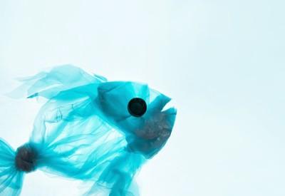Poisson fait entièrement de plastiques